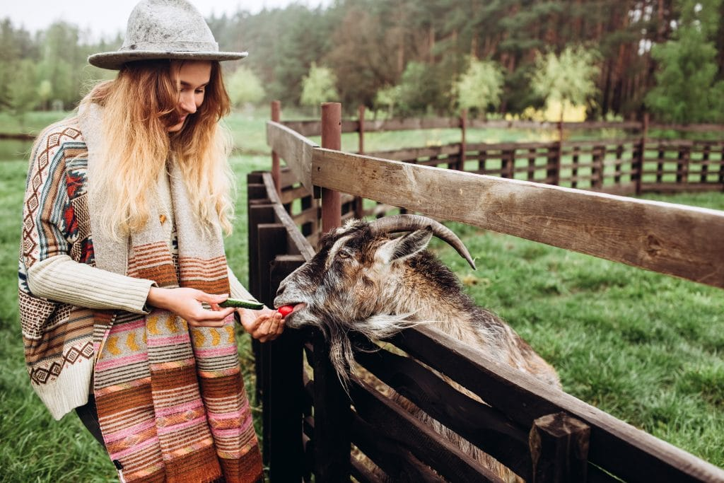 how best to enjoy a successful rural lifestyle| how best to enjoy a successful rural lifestyle