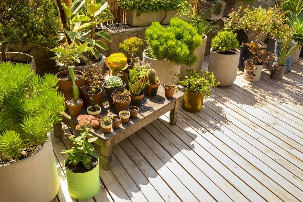 look outside your property box| look outside your property box