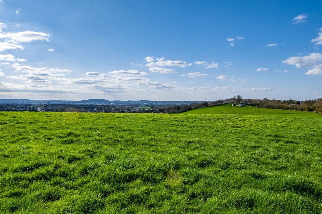 open grass hills| Acreage challenges