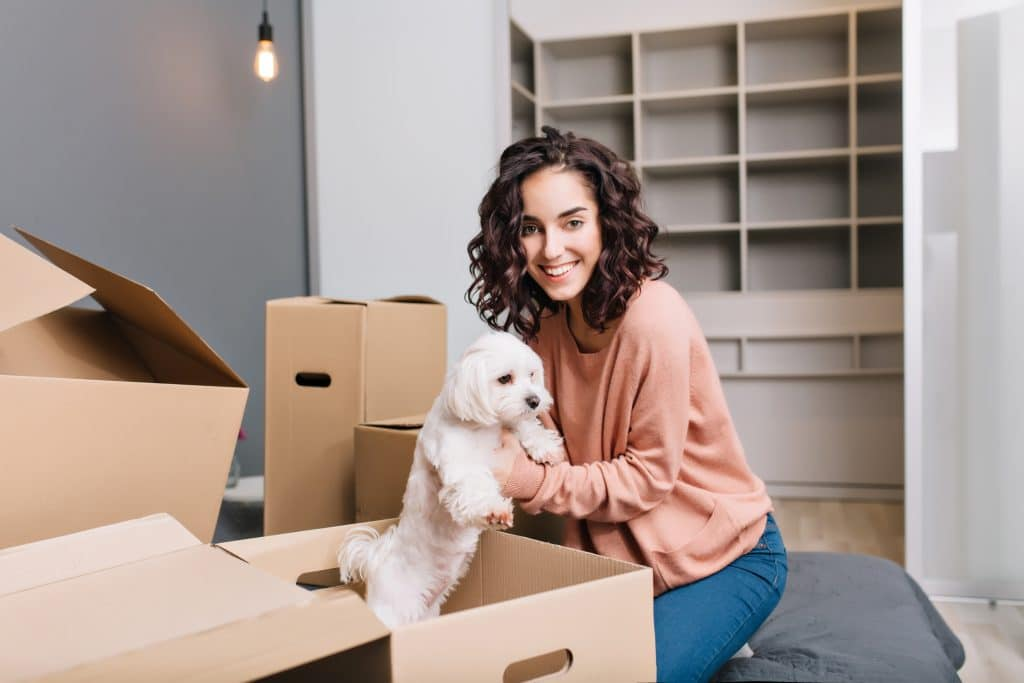 puppy from box| How to simplify your house move