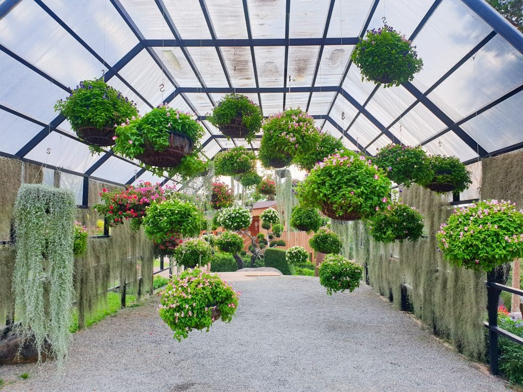 greenhouse| Why first impressions are so important when selling